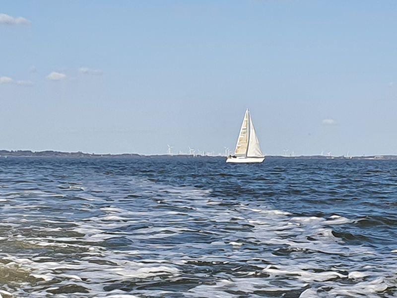 segelboot8DCB44A7-B0DF-141D-BB26-C9A99C0D59F6.jpg